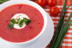Borsch in a white dish Stock Images