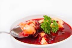 borscht κόκκινο μπουλεττών στοκ φωτογραφία με δικαίωμα ελεύθερης χρήσης