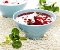borscht σούπα Στοκ εικόνα με δικαίωμα ελεύθερης χρήσης