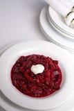 Borscht. Homemade bowl of delicious beet soup royalty free stock image
