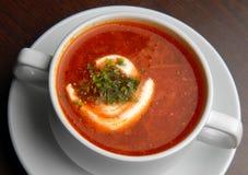 borscht Стоковая Фотография