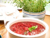 Borscht Stock Photography