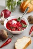 Borscht auf der Schüssel Mit Gemüse lizenzfreie stockfotos