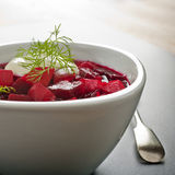 Borscht or Beetroot Soup Square Royalty Free Stock Photography