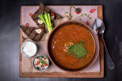 Borscht in a brown porcelain dish with bread royalty free stock image