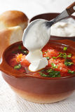 Borscht closeup Stock Photography