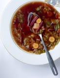 Borscht de la sopa imagenes de archivo