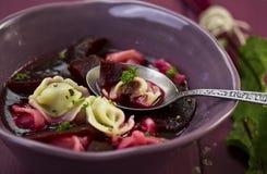 Borscht mit Fleischravioli- und -wurzel-Klumpen stockfotografie