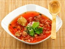 Borscht rosso casalingo Immagine Stock