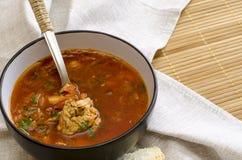 Borscht ruso ucraniano tradicional de la sopa de verduras, con crema dura rollos de pan de centeno del perejil imagen de archivo