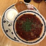Borscht. Russiafood soup meal russia meal royalty free stock image