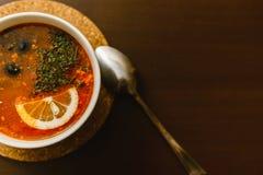 borscht, solyanka com lim?o imagens de stock
