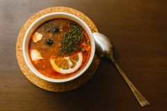 borscht, solyanka met citroen royalty-vrije stock afbeelding