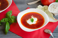 Borscht with sour cream plate Stock Images