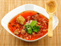 Borscht vermelho caseiro Imagem de Stock