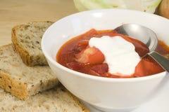 borscht zup warzywnych Fotografia Stock