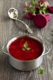 Borschtsch mit roten Rüben Lizenzfreie Stockbilder