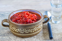 Borschtsch, stew of Russia Stock Images