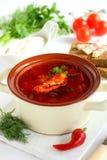 Borschtsch, ukrainische Küche. Stockfotos
