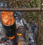 Borschtschmilitärwerfer Stockbild