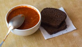Borschtsoppa med bröd arkivbild