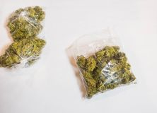Borse dell'erbaccia; fondo della cannabis su bianco fotografia stock libera da diritti