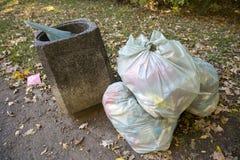 Borse di immondizia nel parco vicino al recipiente Fotografia Stock Libera da Diritti