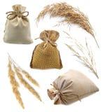 Borse di tela da imballaggio con le erbe Fotografia Stock