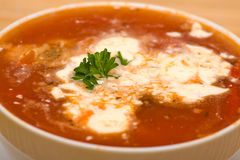 Borshch, traditional Russian and Ukrainian soup Royalty Free Stock Photo