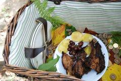 Borst met barbecue Royalty-vrije Stock Foto's