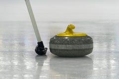Borsta och gulna den krullande stenen på isen Royaltyfria Bilder