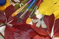 borstar färgade leaves arkivbilder