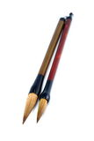 borstekinespennor Royaltyfria Bilder