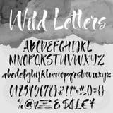 Borstel die alfabetische reeks van letters voorzien Stock Fotografie
