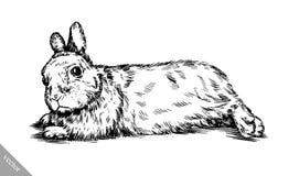 Borstel het schilderen de inkt trekt geïsoleerde konijnillustratie Stock Fotografie