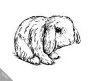 Borstel het schilderen de inkt trekt geïsoleerde konijnillustratie Stock Afbeeldingen