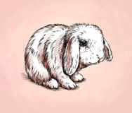 Borstel het schilderen de inkt trekt konijnillustratie Stock Fotografie