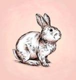 Borstel het schilderen de inkt trekt konijnillustratie Royalty-vrije Stock Afbeelding