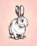 Borstel het schilderen de inkt trekt konijnillustratie Stock Afbeelding