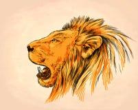 Borstel het schilderen de inkt trekt leeuwillustratie Stock Foto's