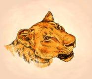 Borstel het schilderen de inkt trekt leeuwillustratie Stock Fotografie