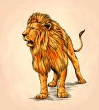Borstel het schilderen de inkt trekt leeuwillustratie Royalty-vrije Stock Afbeeldingen