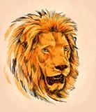 Borstel het schilderen de inkt trekt leeuwillustratie Stock Foto
