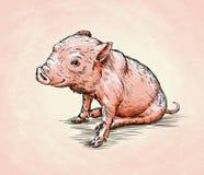 Borstel het schilderen de inkt trekt varkensillustratie Stock Foto