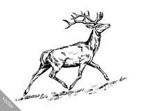 Borstel het schilderen de inkt trekt vectorhertenillustratie Royalty-vrije Stock Afbeeldingen