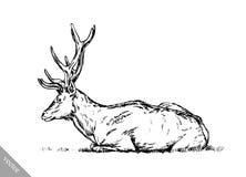 Borstel het schilderen de inkt trekt vectorhertenillustratie Stock Afbeeldingen