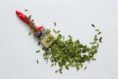 Borstel met groene bladeren Stock Fotografie