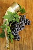 Borstel rijpe zoete druiven met een traditionele het drinken hoorn Stock Afbeeldingen