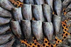 Borstspier van zon de droge Trichogaster in mand voor Prepare het koken royalty-vrije stock fotografie
