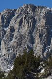 Borstweringen boven Lager Lamarck-Meer, John Muir Wilderness, Siërra Nevada Range, Californië 2 Stock Foto